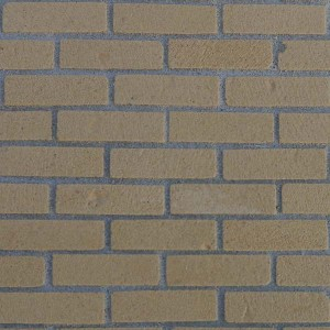 Gault Brickslips - Large Pack of 500