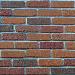 Multi Red Brickslips - Large Pack of 500