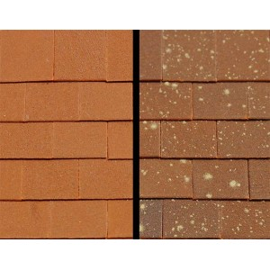 Versi Tiles - Bulk Pack of 1000